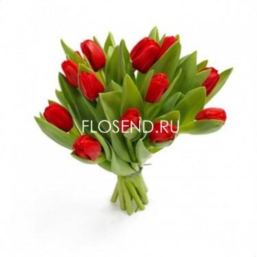 11 Тюльпанов
